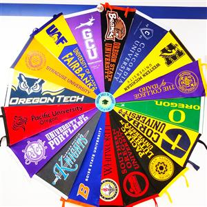 Photo of College Pennants
